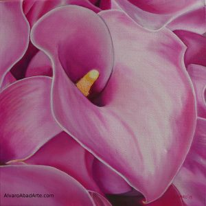 Cala Fucsia Oleo Color Flores