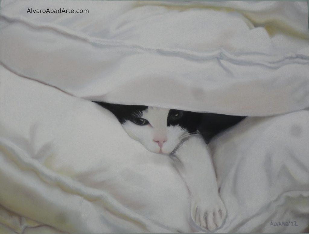 Missi Pastel Gato Animales