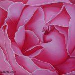 Rosa Rosae Óleo Color Flores